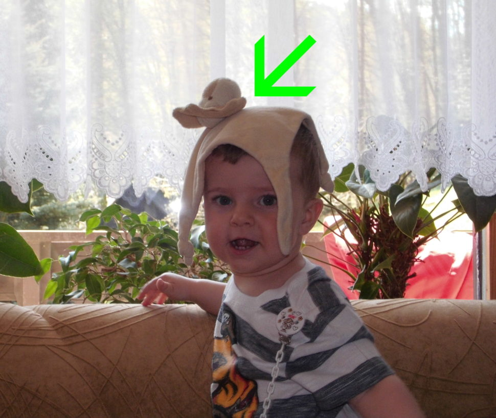 Co dětem na hlavu? Přece Muchlinku.