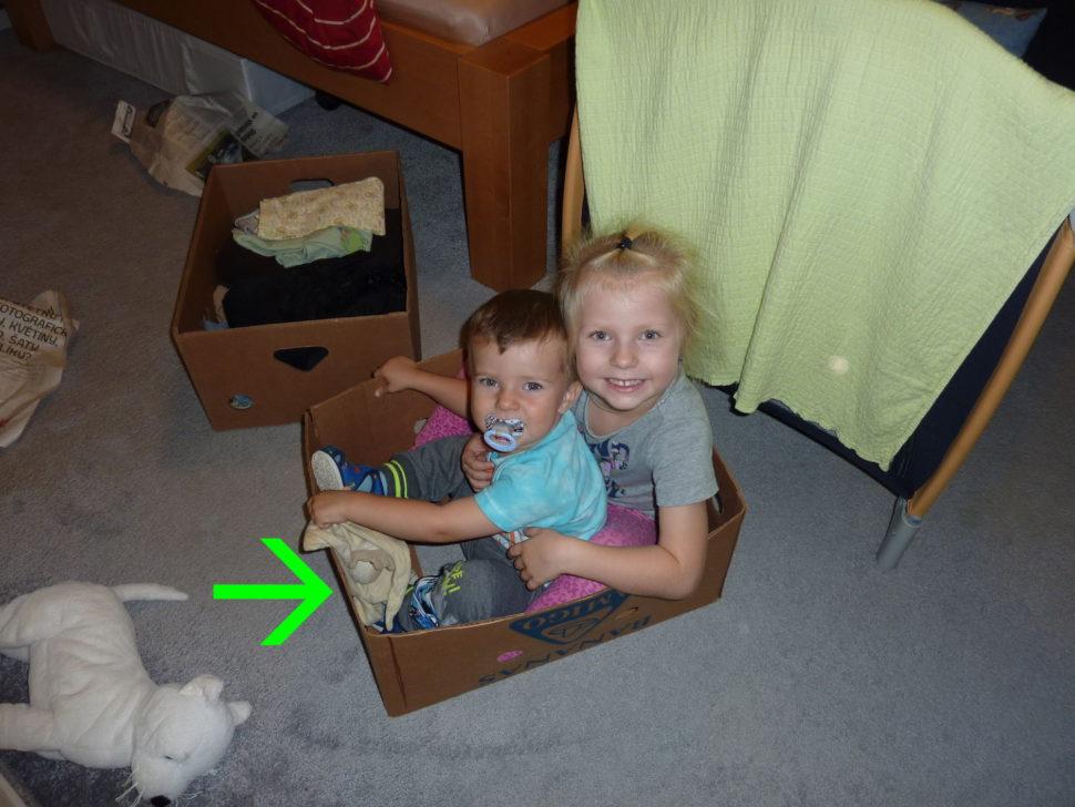 Krabice je nejlepší hračka.